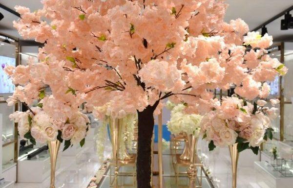 Arbre Cerisier rose